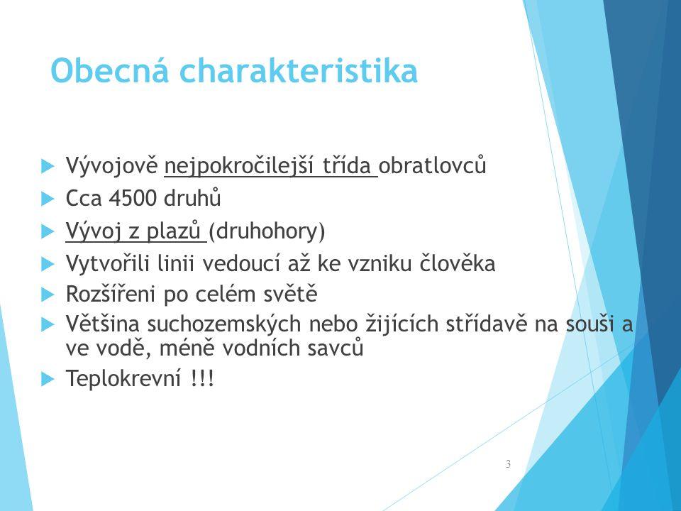 Zdroje Všechny zdroje použité v této prezentaci pocházejí z autorova archívu. 24