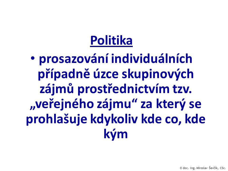 Politika prosazování individuálních případně úzce skupinových zájmů prostřednictvím tzv.