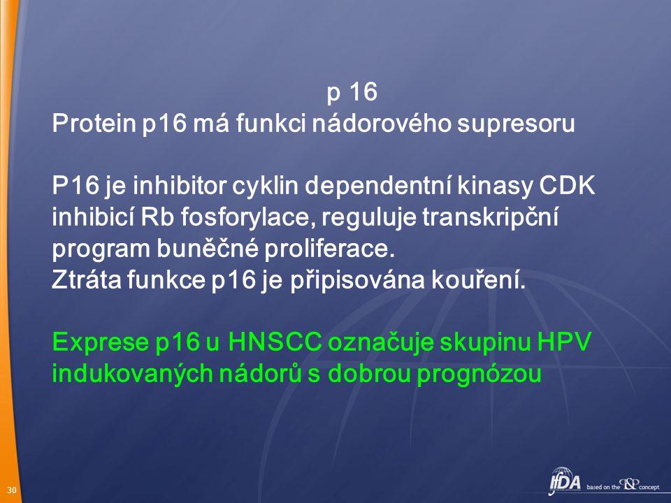 30 p 16 Protein p16 má funkci nádorového supresoru P16 je inhibitor cyklin dependentní kinasy CDK inhibicí Rb fosforylace, reguluje transkripční program buněčné proliferace.