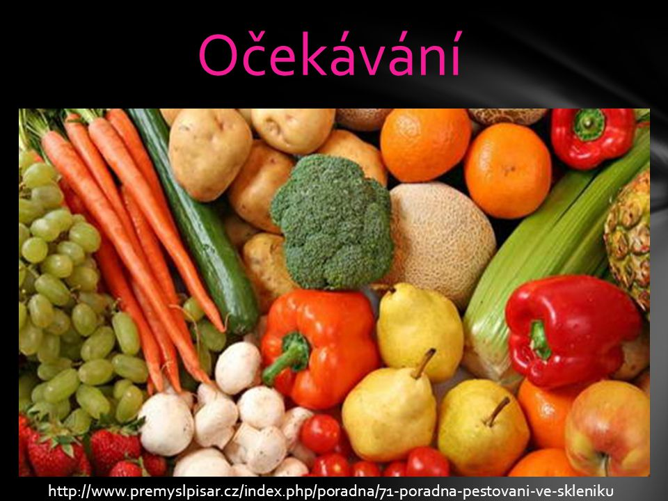 Očekávání http://www.premyslpisar.cz/index.php/poradna/71-poradna-pestovani-ve-skleniku