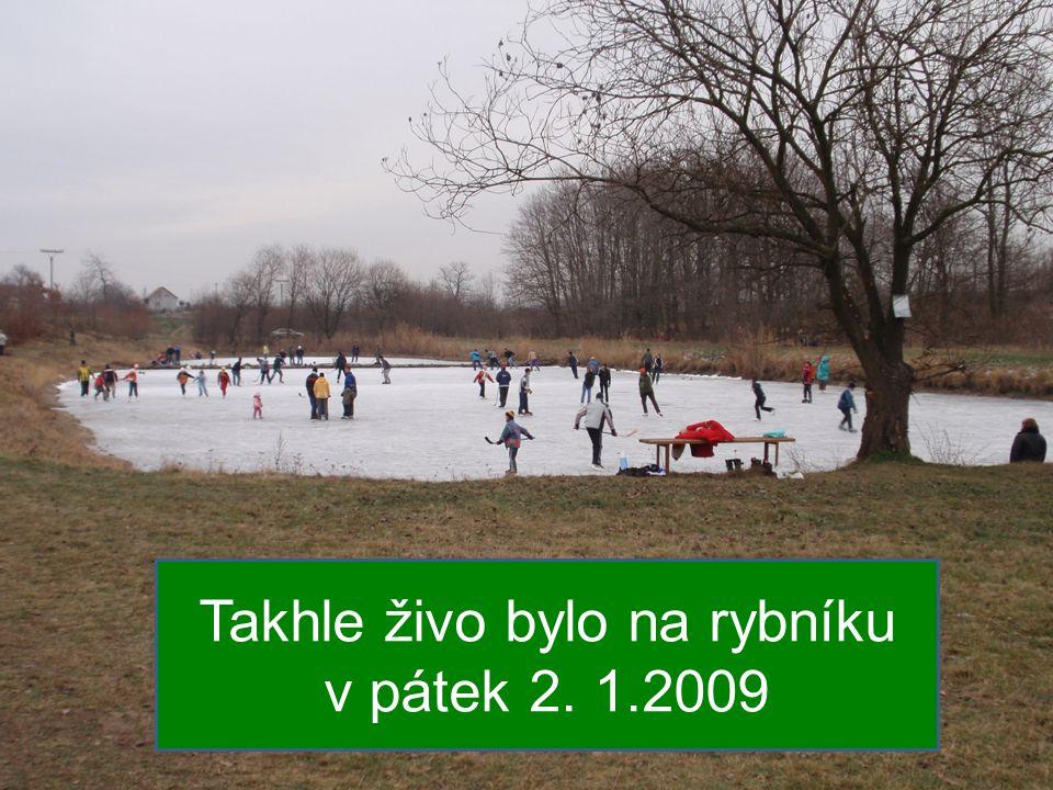 Takhle živo bylo na rybníku v pátek 2. 1.2009