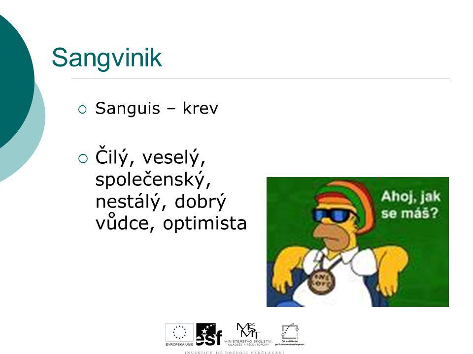 Sangvinik  Sanguis – krev  Čilý, veselý, společenský, nestálý, dobrý vůdce, optimista