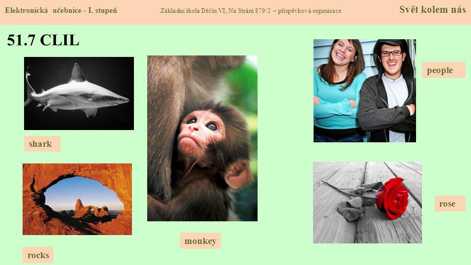 51.7 CLIL Elektronická učebnice - I. stupeň Základní škola Děčín VI, Na Stráni 879/2 – příspěvková organizace Svět kolem nás monkey people rose shark