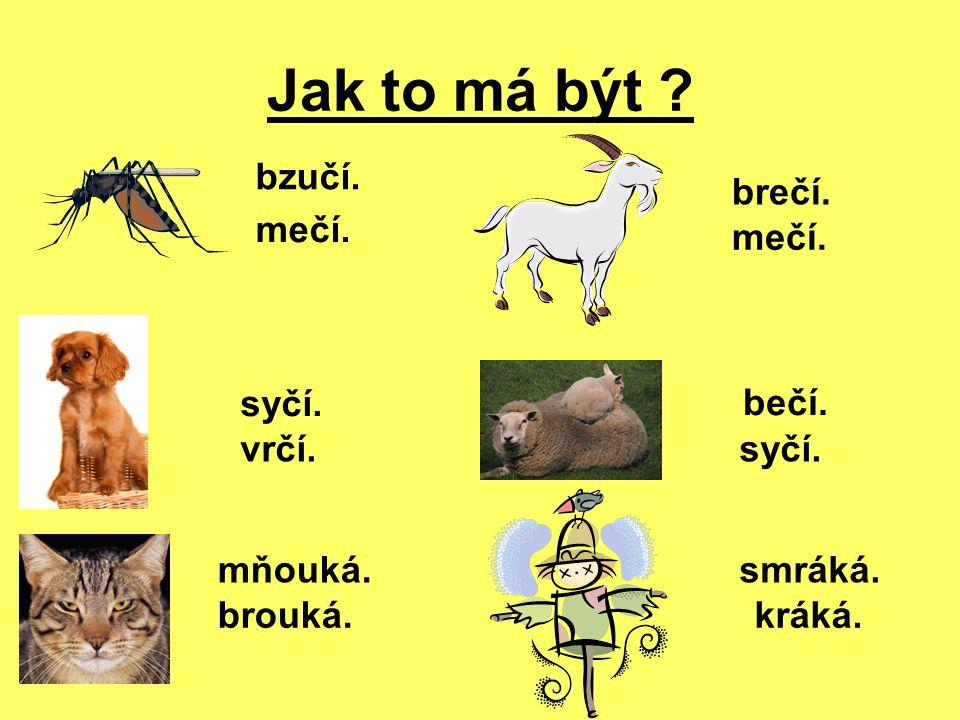 Kontrola : Komár bzučí. Pes vrčí. Kočka mňouká. Koza mečí. Ovce bečí. Vrána kráká.