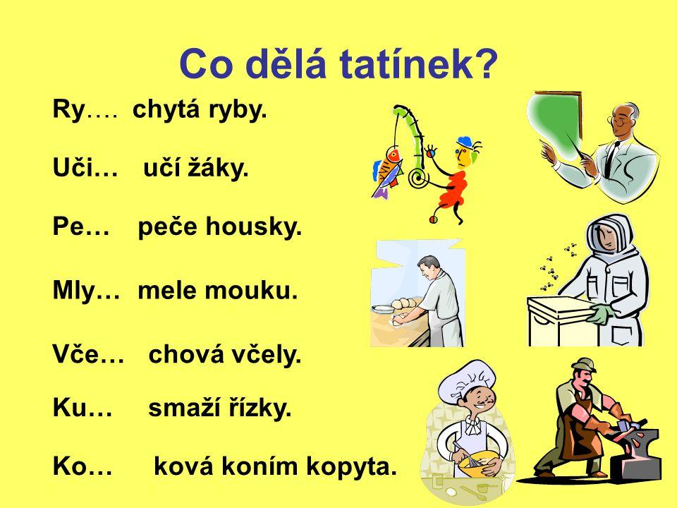 Kontrola: Rybář chytá ryby.Učitel učí žáky. Pekař peče housky.