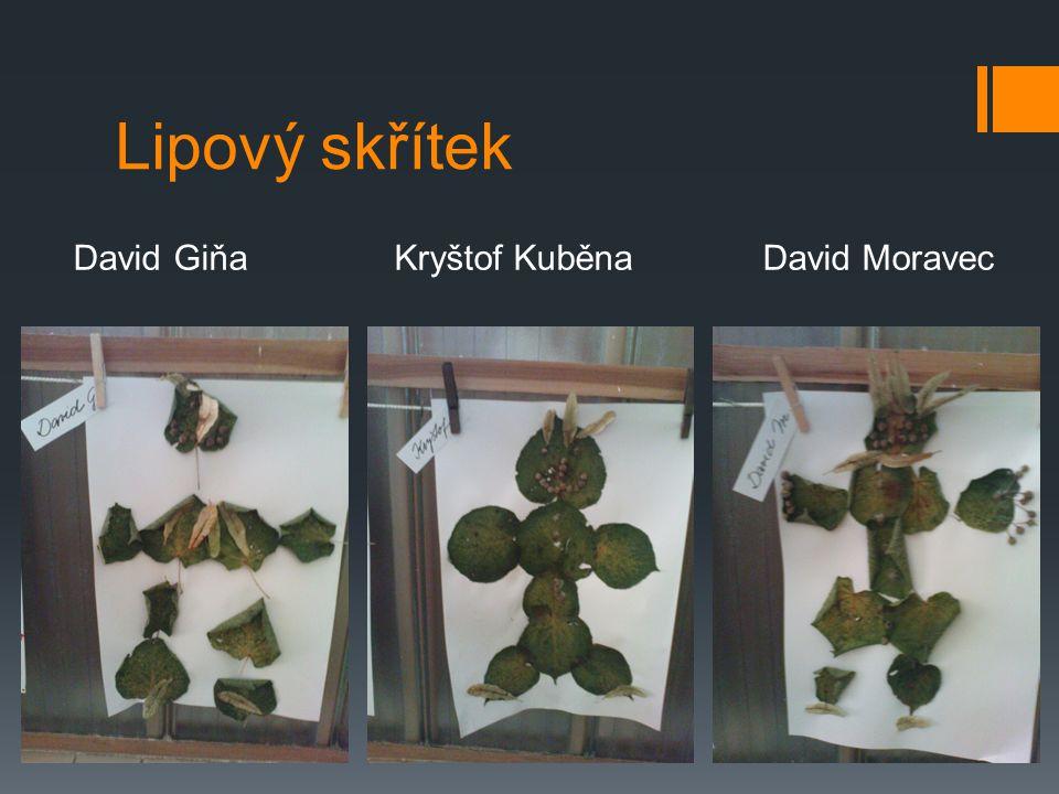 Lipový skřítek David Giňa Kryštof Kuběna David Moravec