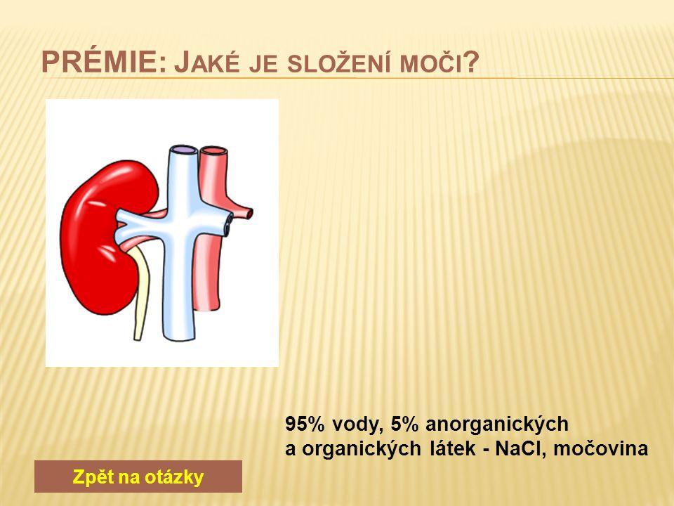 Zpět na otázky glykogen