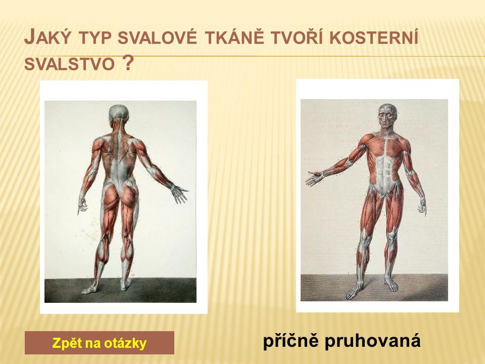 a) vitamín A, vápník a železo b) vitamín D, vápník a fosfor c) vitamín D, železo a fosfor Zpět na otázky b) vitamín D, vápník a fosfor