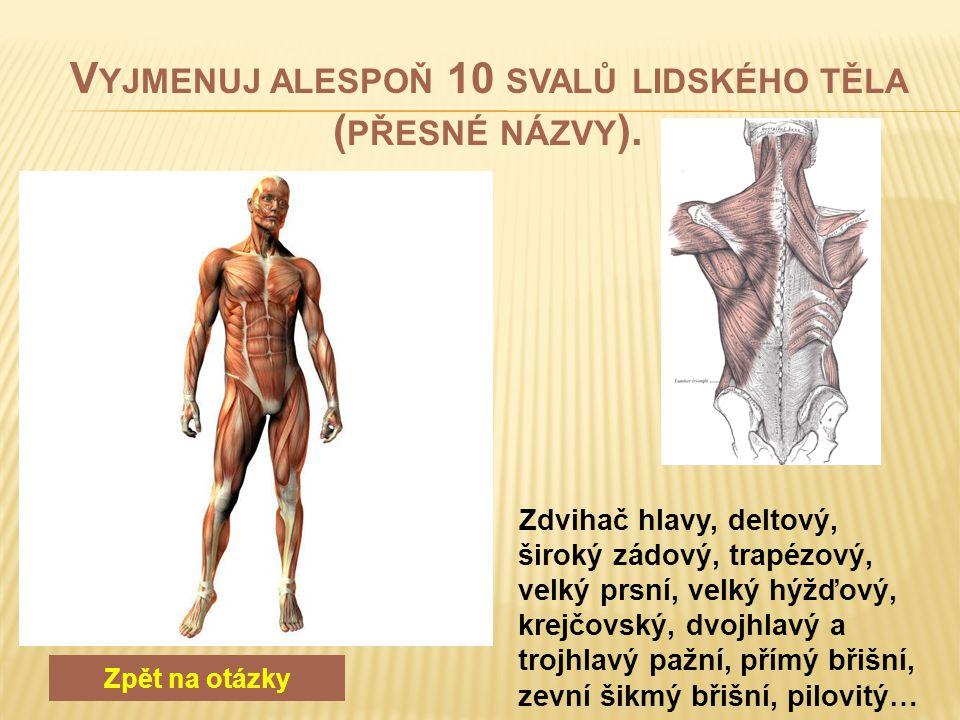 Zpět na otázky Čelní, temenní, týlní, spánková, klínová, lícní, dolní a horní čelist, nosní, čichová, slzní…