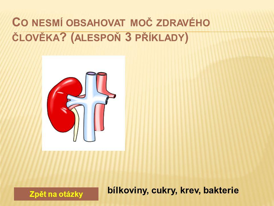 Zpět na otázky v ledvinách