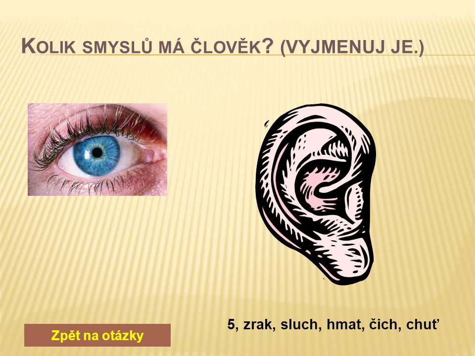 Zpět na otázky 5, zrak, sluch, hmat, čich, chuť