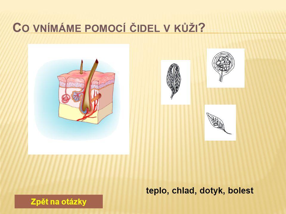 Zpět na otázky Ledviny, močovody, moč. měchýř, moč. trubice