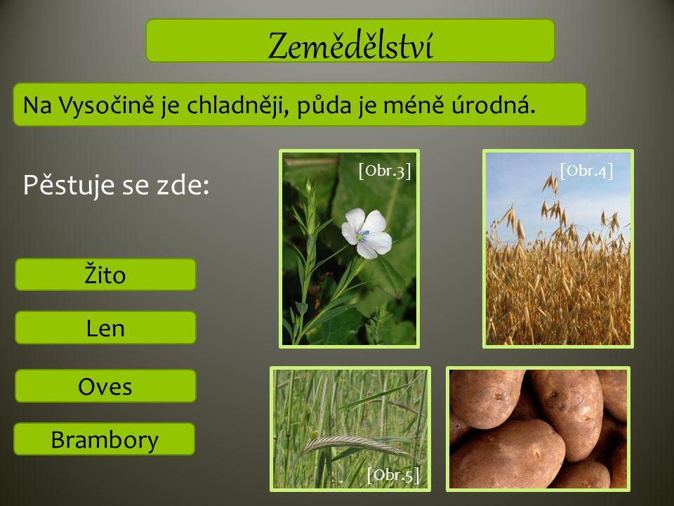 Zemědělství Brambory Oves Len Na Vysočině je chladněji, půda je méně úrodná. Žito [Obr.3][Obr.4] Pěstuje se zde: [Obr.5]