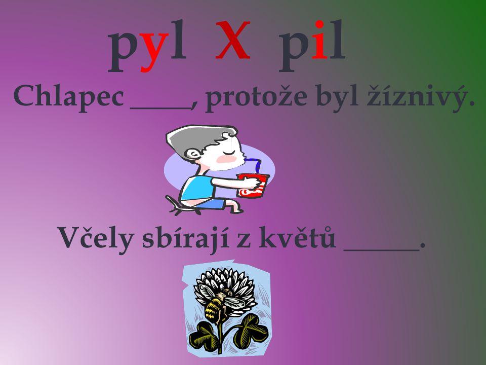 pyl X pil Chlapec ____, protože byl žíznivý. Včely sbírají z květů _____. yyii pilpil pylpyl