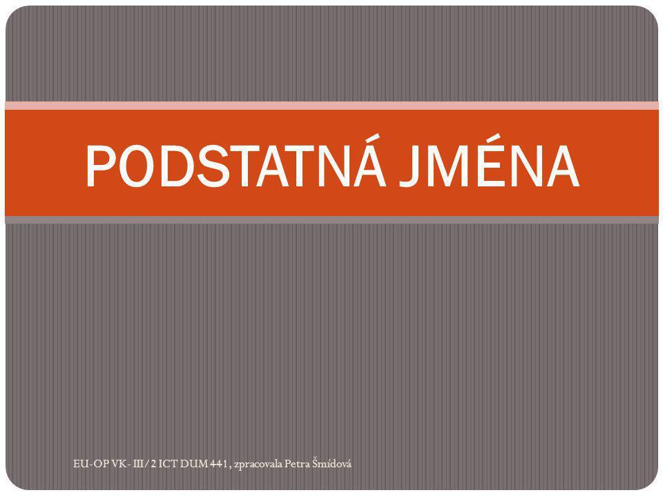PODSTATNÁ JMÉNA EU-OP VK- III/2 ICT DUM 441, zpracovala Petra Šmídová