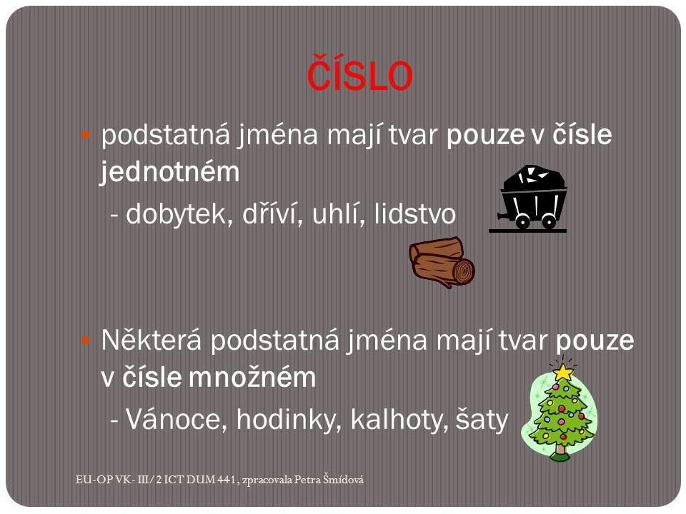 ČÍSLO  podstatná jména mají tvar pouze v čísle jednotném - dobytek, dříví, uhlí, lidstvo  Některá podstatná jména mají tvar pouze v čísle množném - Vánoce, hodinky, kalhoty, šaty EU-OP VK- III/2 ICT DUM 441, zpracovala Petra Šmídová