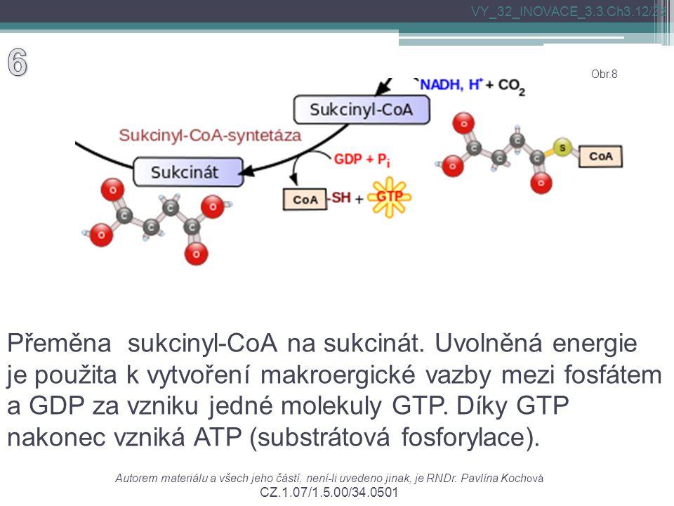 Přeměna sukcinyl-CoA na sukcinát. Uvolněná energie je použita k vytvoření makroergické vazby mezi fosfátem a GDP za vzniku jedné molekuly GTP. Díky GT