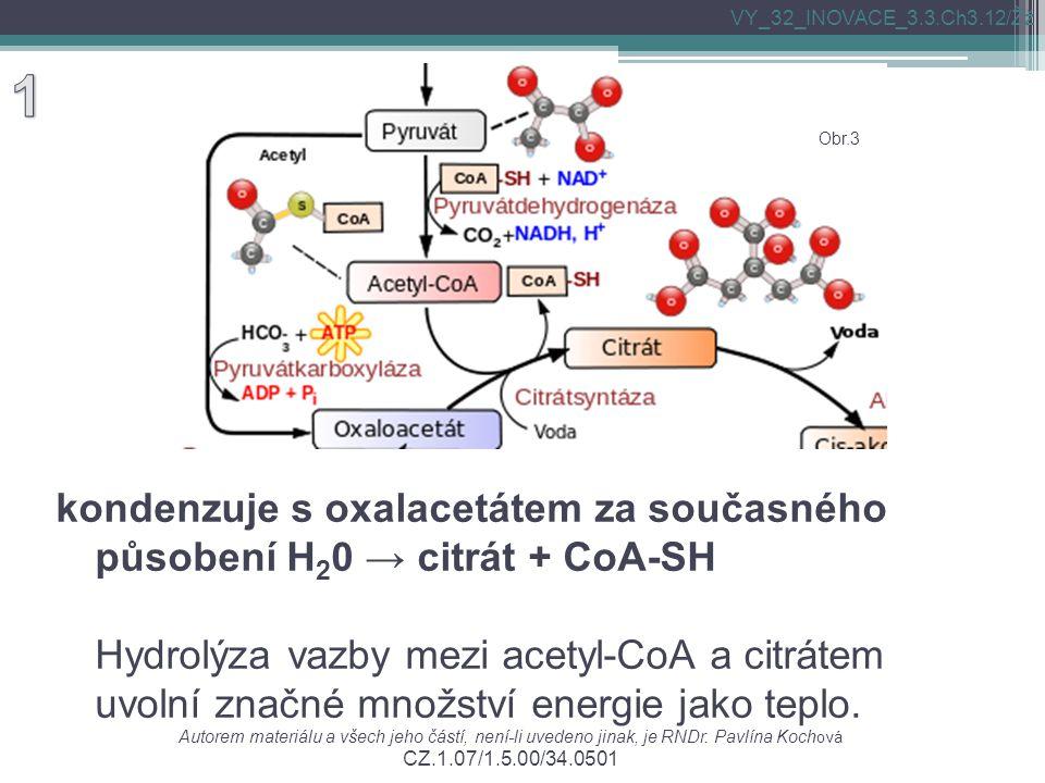 kondenzuje s oxalacetátem za současného působení H 2 0 → citrát + CoA-SH Hydrolýza vazby mezi acetyl-CoA a citrátem uvolní značné množství energie jak