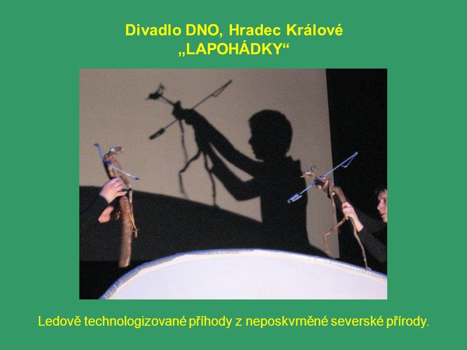 """Divadlo DNO, Hradec Králové """"LAPOHÁDKY Ledově technologizované příhody z neposkvrněné severské přírody."""