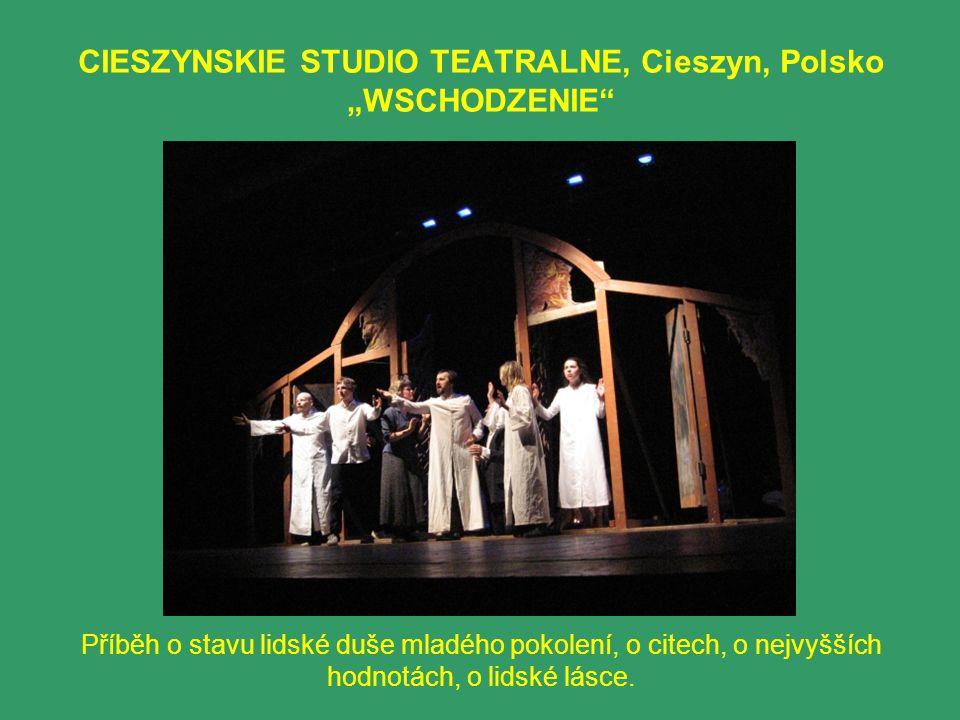 """CIESZYNSKIE STUDIO TEATRALNE, Cieszyn, Polsko """"WSCHODZENIE Příběh o stavu lidské duše mladého pokolení, o citech, o nejvyšších hodnotách, o lidské lásce."""