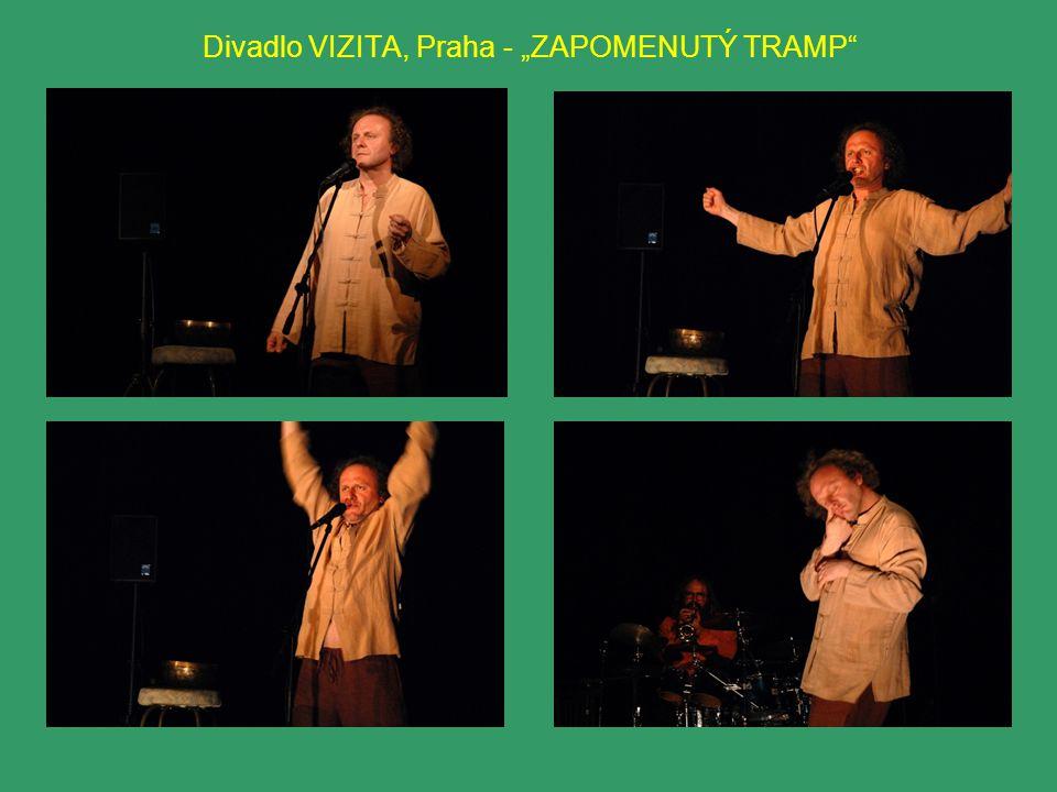 "Divadlo VIZITA, Praha - ""ZAPOMENUTÝ TRAMP"""