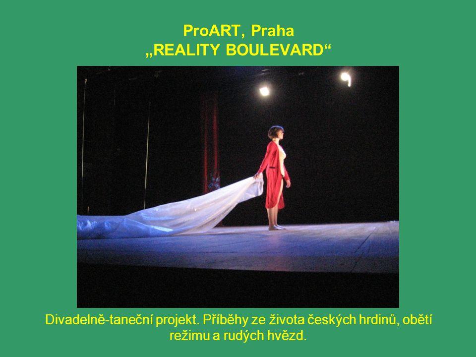 """ProART, Praha """"REALITY BOULEVARD"""" Divadelně-taneční projekt. Příběhy ze života českých hrdinů, obětí režimu a rudých hvězd."""