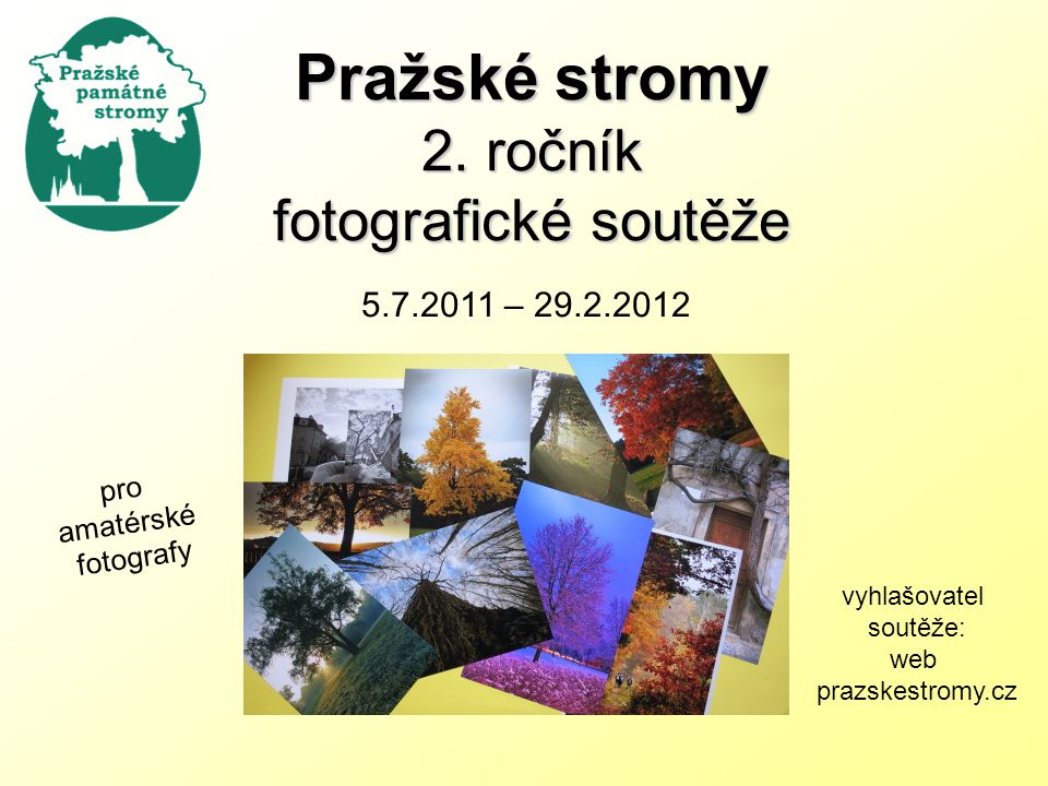 Pražské stromy 2.