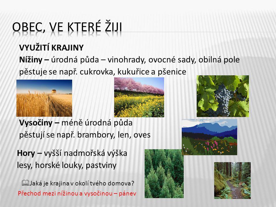 VYUŽITÍ KRAJINY 5 Nížiny – úrodná půda – vinohrady, ovocné sady, obilná pole pěstuje se např. cukrovka, kukuřice a pšenice Vysočiny – méně úrodná půda