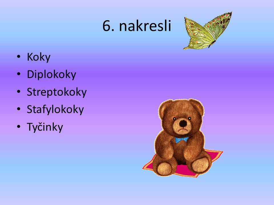 6. nakresli Koky Diplokoky Streptokoky Stafylokoky Tyčinky
