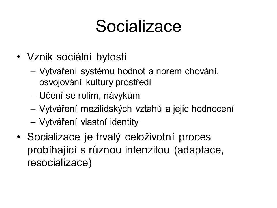 Faktory socializace Společenské prostředí Jedinec Rodina Škola, výuka, výchova, práce Vrstevníci Sdělovací prostředky, televize, umění