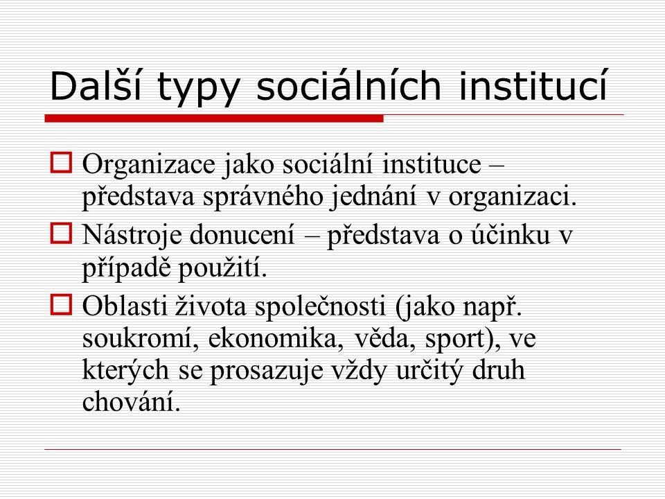 Další typy sociálních institucí  Organizace jako sociální instituce – představa správného jednání v organizaci.  Nástroje donucení – představa o úči