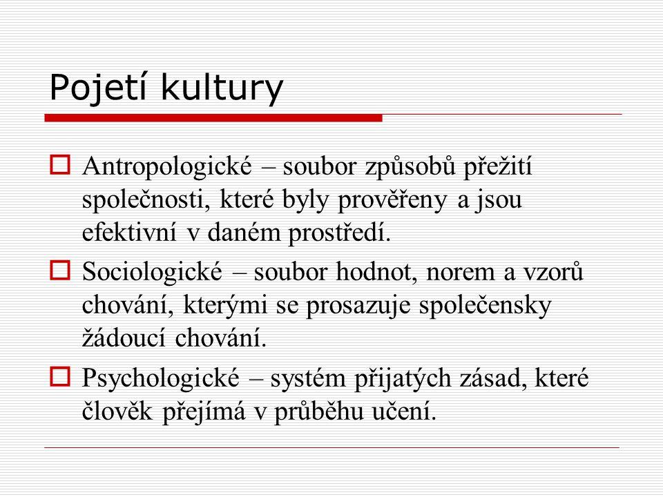 Pojetí kultury  Antropologické – soubor způsobů přežití společnosti, které byly prověřeny a jsou efektivní v daném prostředí.  Sociologické – soubor