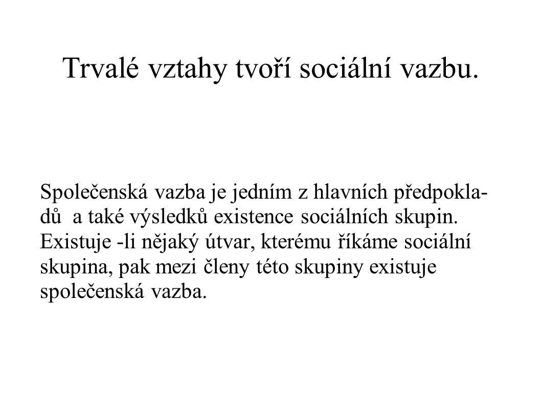 Trvalé vztahy tvoří sociální vazbu. Společenská vazba je jedním z hlavních předpokla- dů a také výsledků existence sociálních skupin. Existuje -li něj