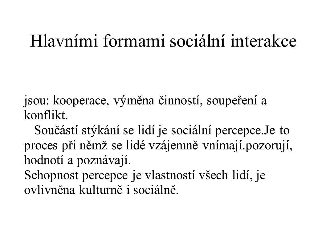 Hlavními formami sociální interakce jsou: kooperace, výměna činností, soupeření a konflikt. Součástí stýkání se lidí je sociální percepce.Je to proces