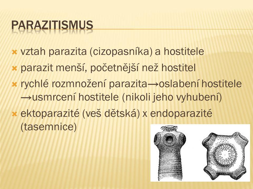  vztah parazita (cizopasníka) a hostitele  parazit menší, početnější než hostitel  rychlé rozmnožení parazita→oslabení hostitele →usmrcení hostitele (nikoli jeho vyhubení)  ektoparazité (veš dětská) x endoparazité (tasemnice)