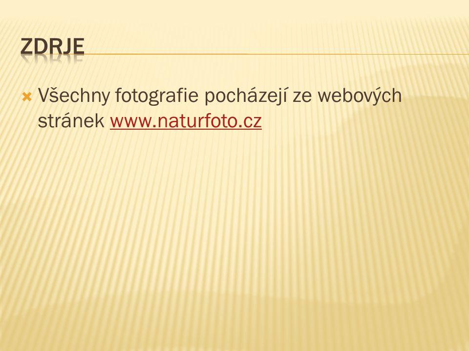  Všechny fotografie pocházejí ze webových stránek www.naturfoto.czwww.naturfoto.cz