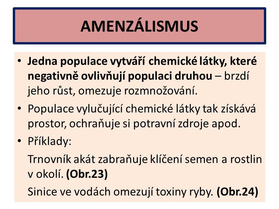 AMENZÁLISMUS Jedna populace vytváří chemické látky, které negativně ovlivňují populaci druhou – brzdí jeho růst, omezuje rozmnožování. Populace vyluču