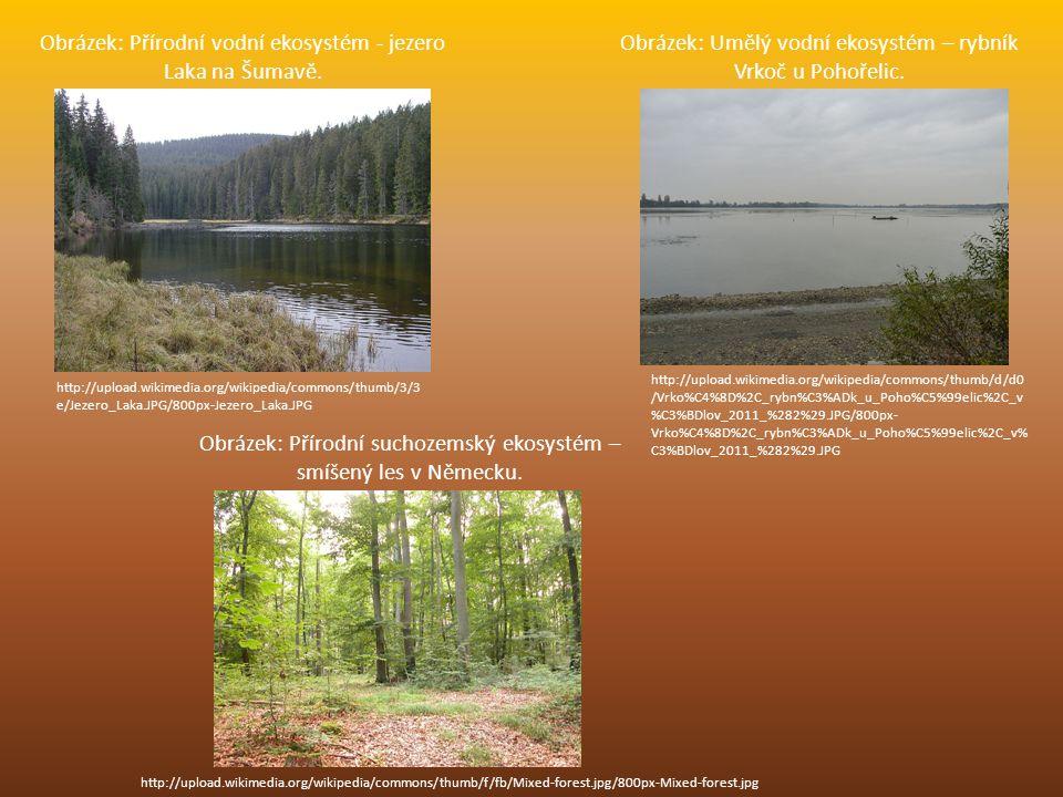 Obrázek: Přírodní vodní ekosystém - jezero Laka na Šumavě. http://upload.wikimedia.org/wikipedia/commons/thumb/3/3 e/Jezero_Laka.JPG/800px-Jezero_Laka