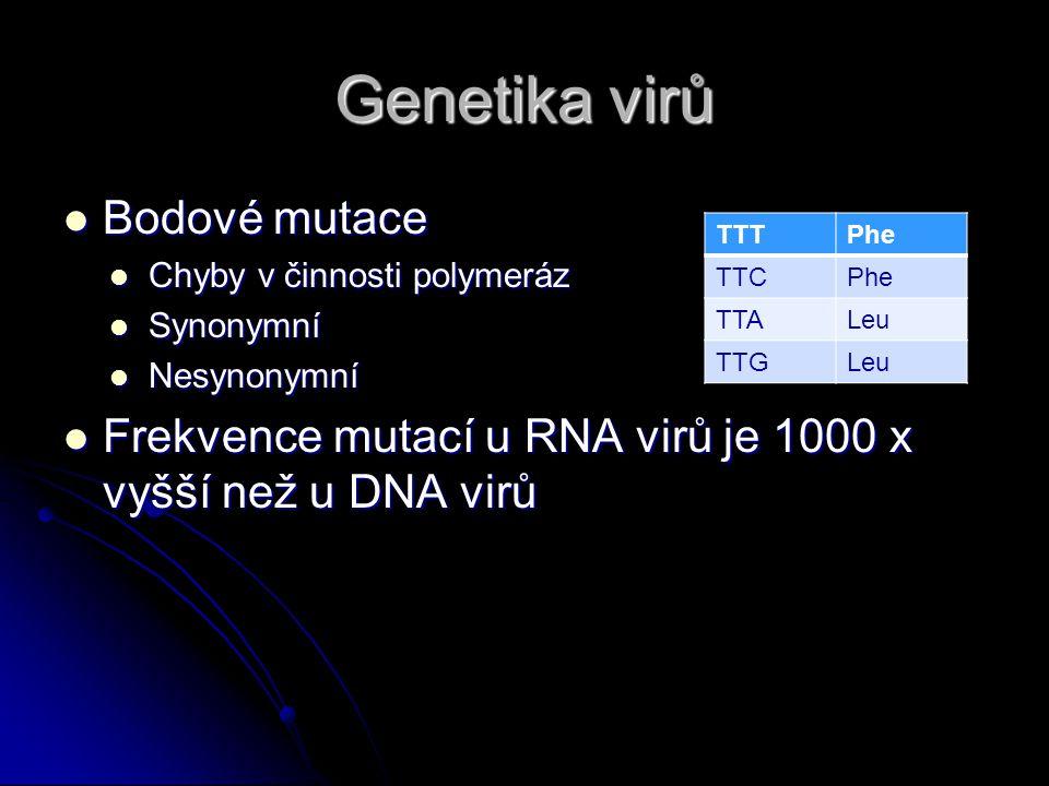 Genetika virů Bodové mutace Bodové mutace Chyby v činnosti polymeráz Chyby v činnosti polymeráz Synonymní Synonymní Nesynonymní Nesynonymní Frekvence mutací u RNA virů je 1000 x vyšší než u DNA virů Frekvence mutací u RNA virů je 1000 x vyšší než u DNA virů TTTPhe TTCPhe TTALeu TTGLeu