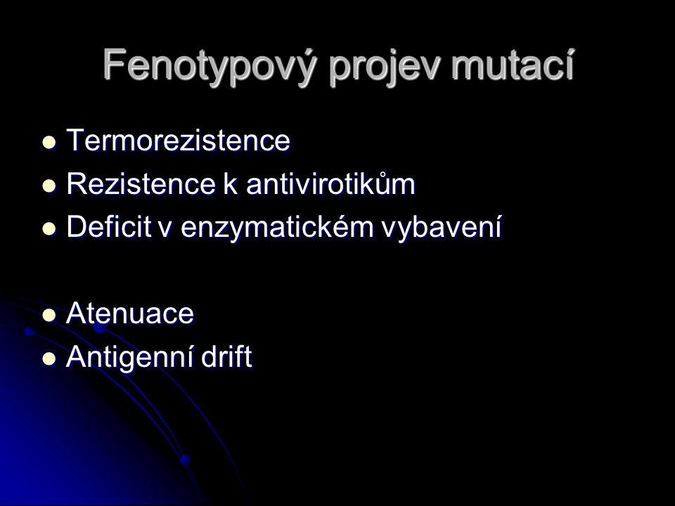Fenotypový projev mutací Termorezistence Termorezistence Rezistence k antivirotikům Rezistence k antivirotikům Deficit v enzymatickém vybavení Deficit v enzymatickém vybavení Atenuace Atenuace Antigenní drift Antigenní drift