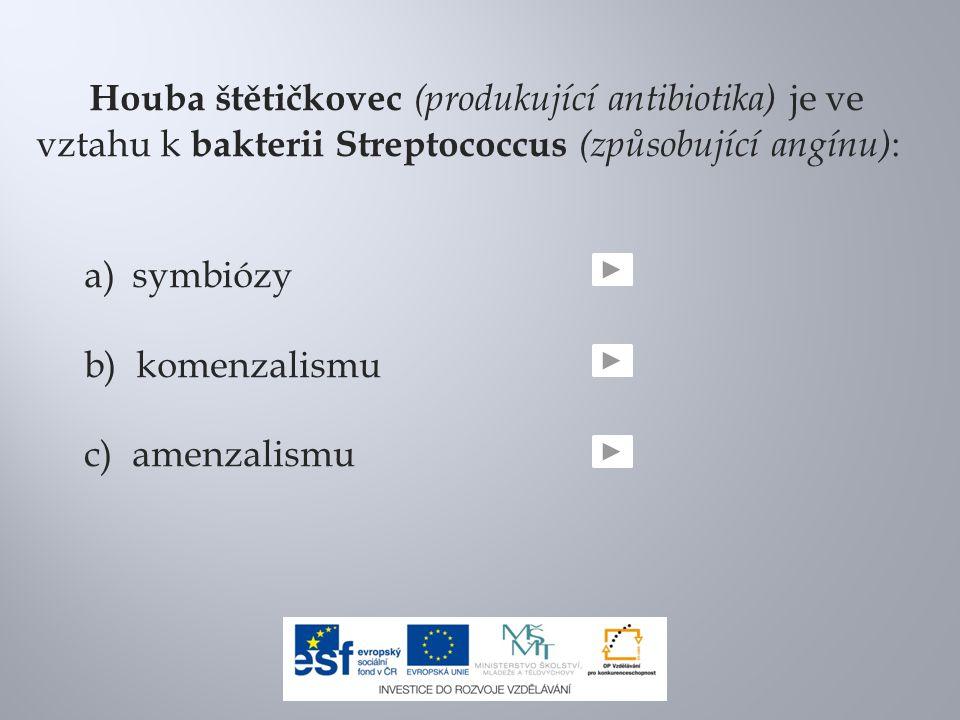 Houba štětičkovec (produkující antibiotika) je ve vztahu k bakterii Streptococcus (způsobující angínu) : a)symbiózy b) komenzalismu c) amenzalismu