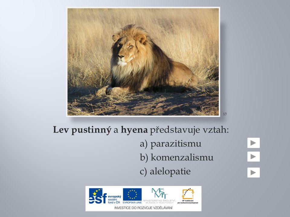 15 Lev pustinný a hyena představuje vztah: a) parazitismu b) komenzalismu c) alelopatie