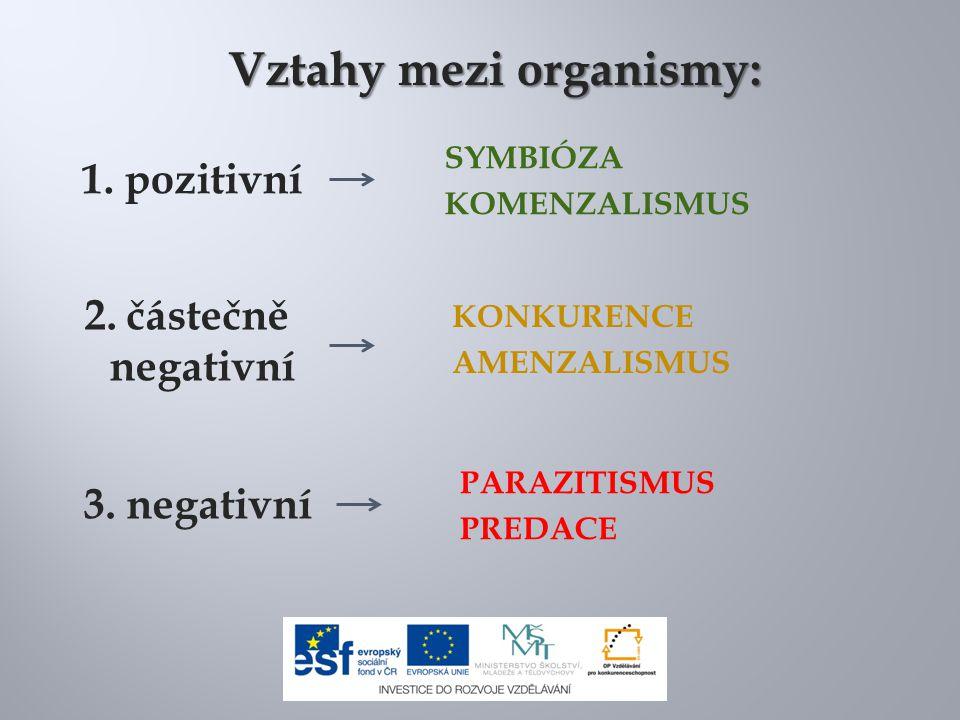 1. pozitivní 2. částečně negativní 3. negativní Vztahy mezi organismy: SYMBIÓZA KOMENZALISMUS KONKURENCE AMENZALISMUS PARAZITISMUS PREDACE