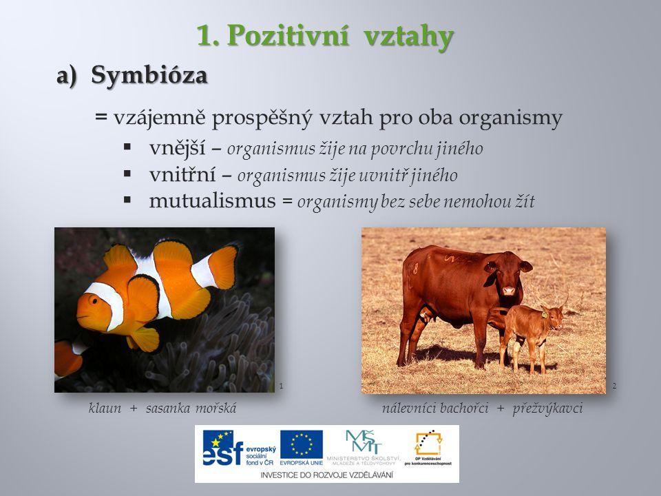 1. Pozitivní vztahy a) Symbióza = vzájemně prospěšný vztah pro oba organismy  vnější – organismus žije na povrchu jiného  vnitřní – organismus žije