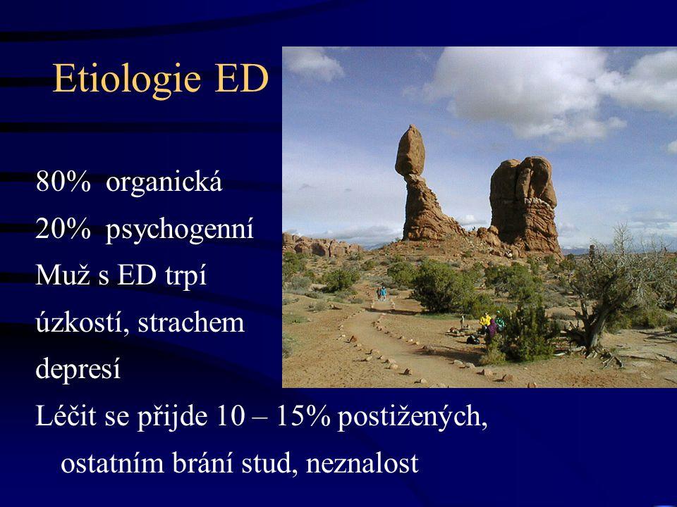 Etiologie ED 80% organická 20% psychogenní Muž s ED trpí úzkostí, strachem depresí Léčit se přijde 10 – 15% postižených, ostatním brání stud, neznalos