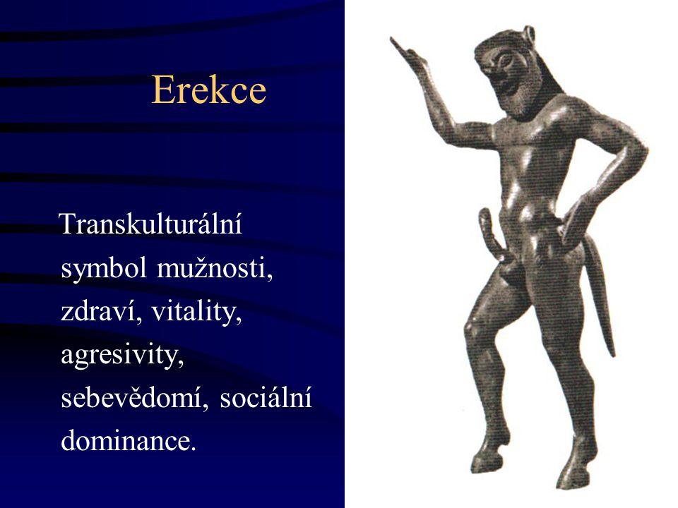 Erekce Transkulturální symbol mužnosti, zdraví, vitality, agresivity, sebevědomí, sociální dominance.