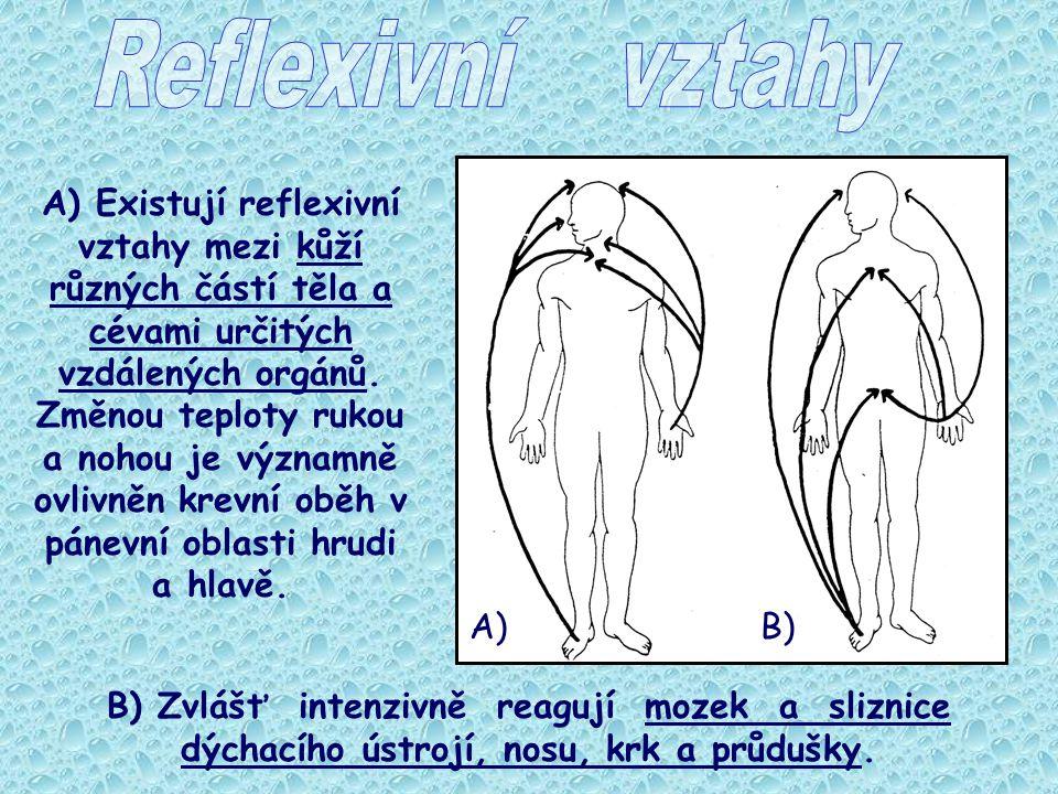 A) Existují reflexivní vztahy mezi kůží různých částí těla a cévami určitých vzdálených orgánů. Změnou teploty rukou a nohou je významně ovlivněn krev