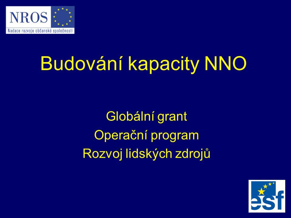 Budování kapacity NNO Globální grant Operační program Rozvoj lidských zdrojů