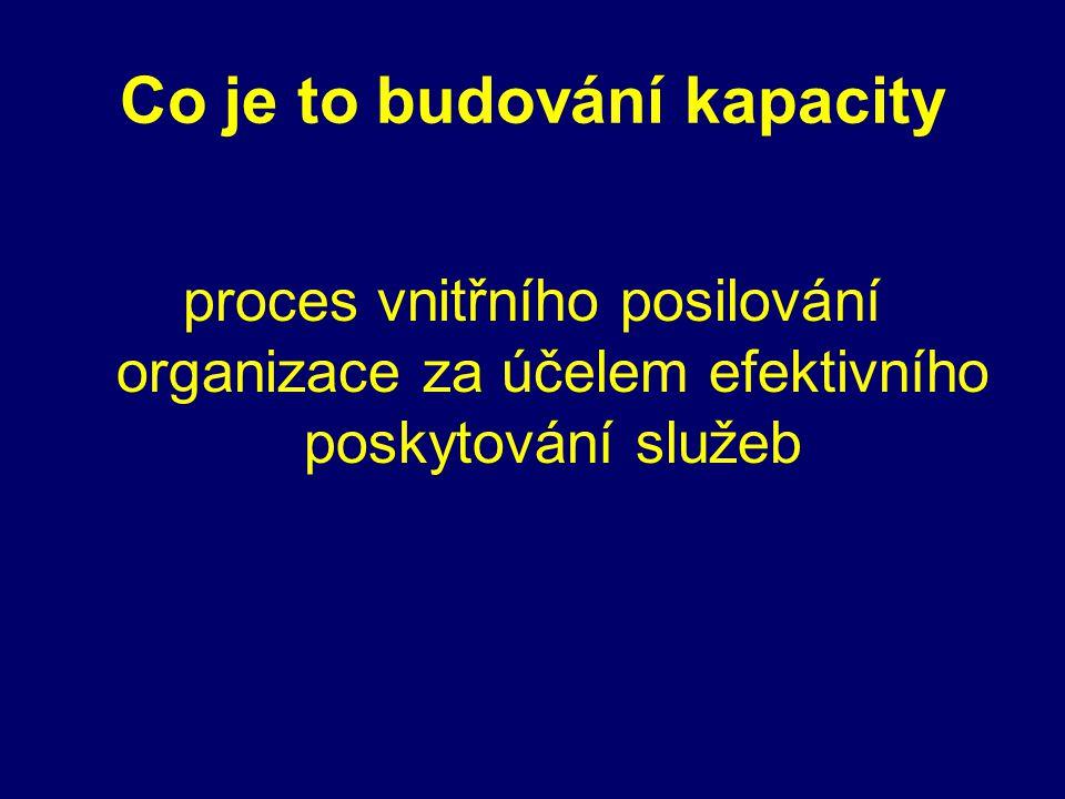 Co je to budování kapacity proces vnitřního posilování organizace za účelem efektivního poskytování služeb