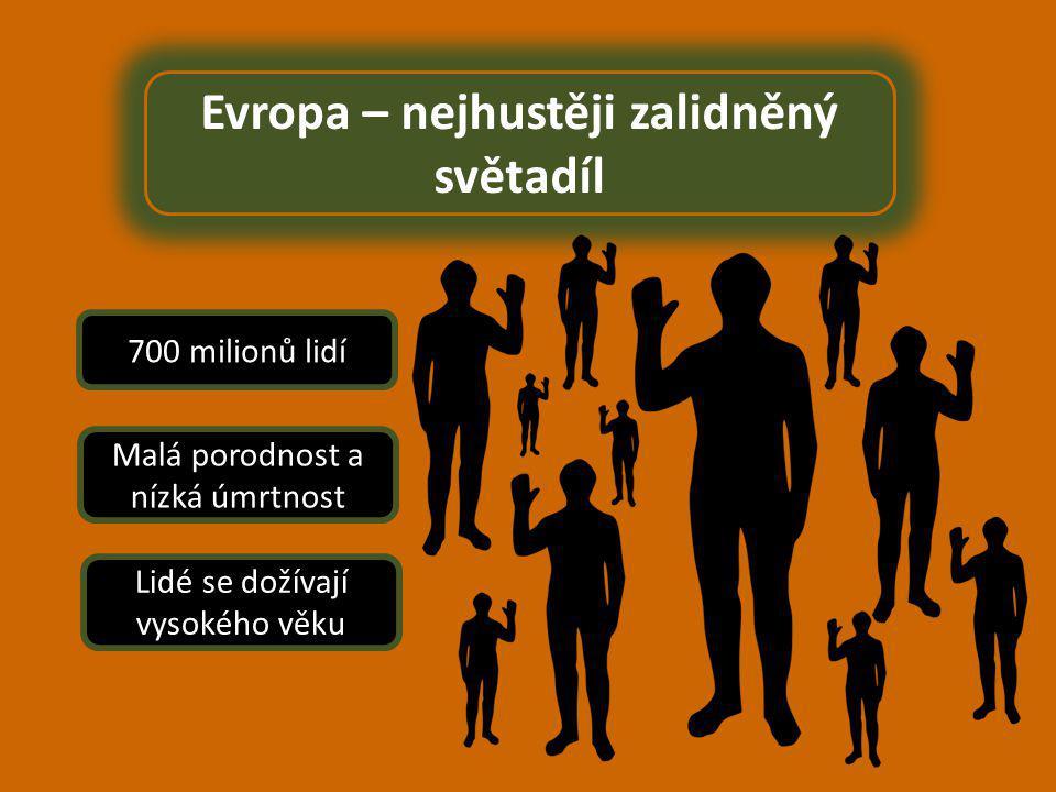 Evropa – nejhustěji zalidněný světadíl 700 milionů lidí Malá porodnost a nízká úmrtnost Lidé se dožívají vysokého věku
